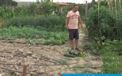 Los huertos sociales de Cáritas Parroquial de Arnedo cumplen su primer año